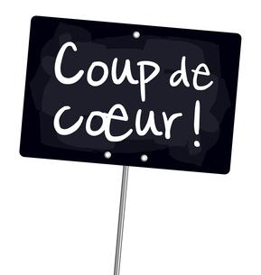 Carnet de lecture d'EmiilieJolie Coup-de-coeur