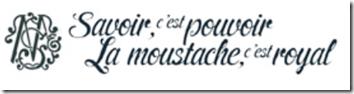 moustache is king fr