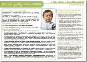 FO PB 6 - Comprendre les émotions intenses IF