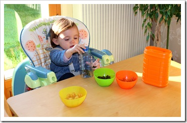 activités montessori enfants