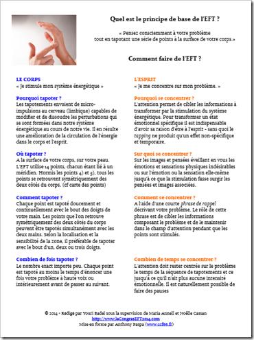 les principes de l'EFT