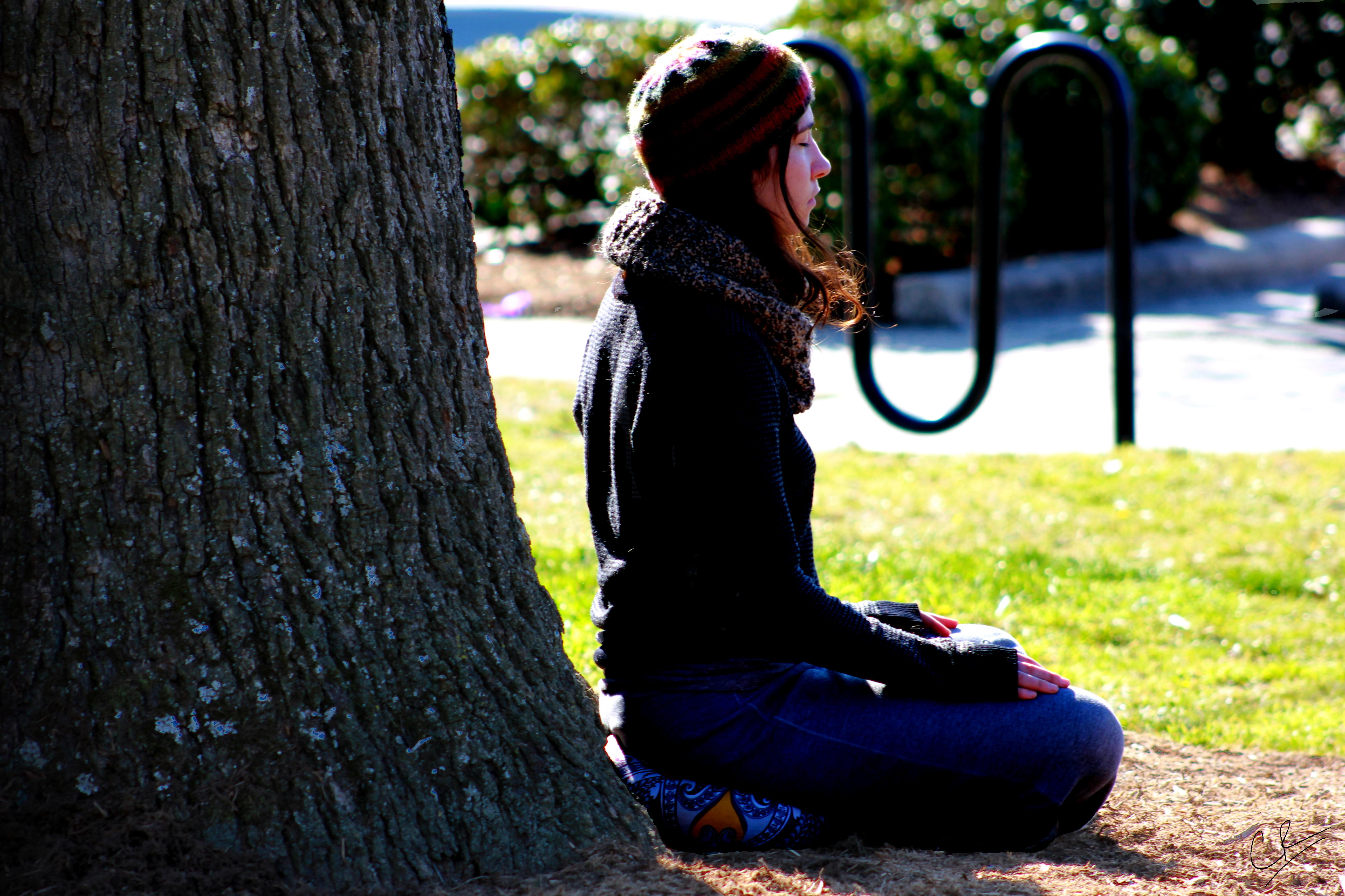 Le jour ou j'ai décidé d'arreter de crier - Caleb Roenigk Meditate