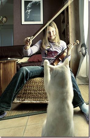 Jeune violonniste et son chat